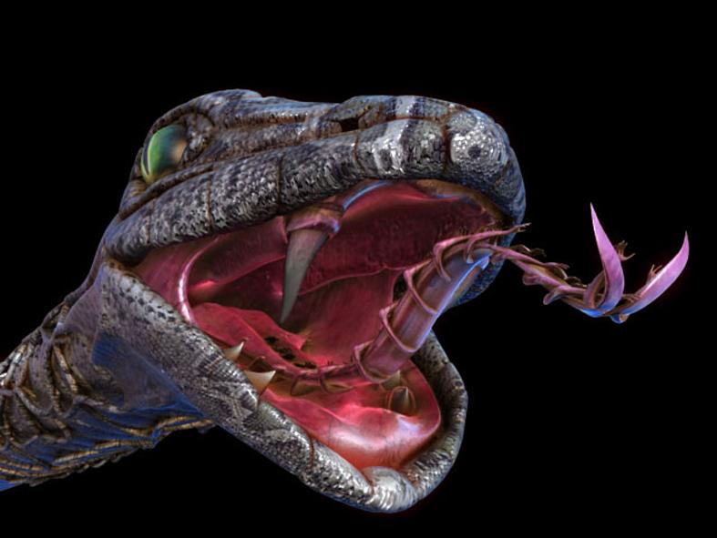 Il corrosivo maldicenza e bendicenza un eterno for Veleno per serpenti